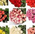Свежие цветы от склада Доставка Пермь